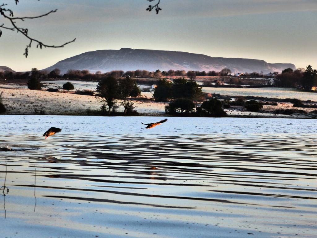Lough Gill Lake Hazelwood Sligo